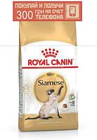 Корм Royal Canin Siamese Adult, для сиамских кошек от 12 месяцев, 10 кг + ПОДАРОК 300 грн на мобильный