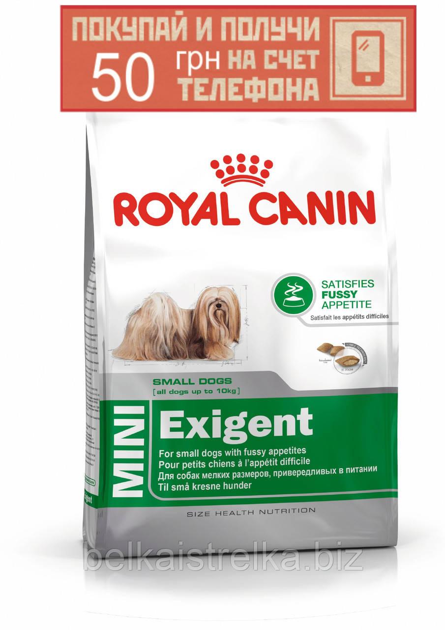 Корм Royal Canin Mini Exigent, для собак привередливых к еде, 2кг + ПОДАРОК 50 грн на мобильный