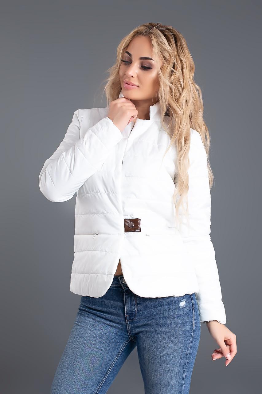 5a8efda2cac Короткая стеганая модная куртка женская с воротником стойкой - AMONA  интернет-магазин модной одежды в