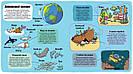 Маленькі дослідники. Підводний світ. Книга Рута Мартіна, фото 3