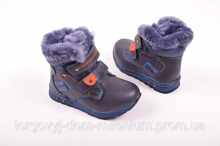 Ботинки для мальчика на меху(цв.синий) EeBb С732 Размер:23,24, фото 2