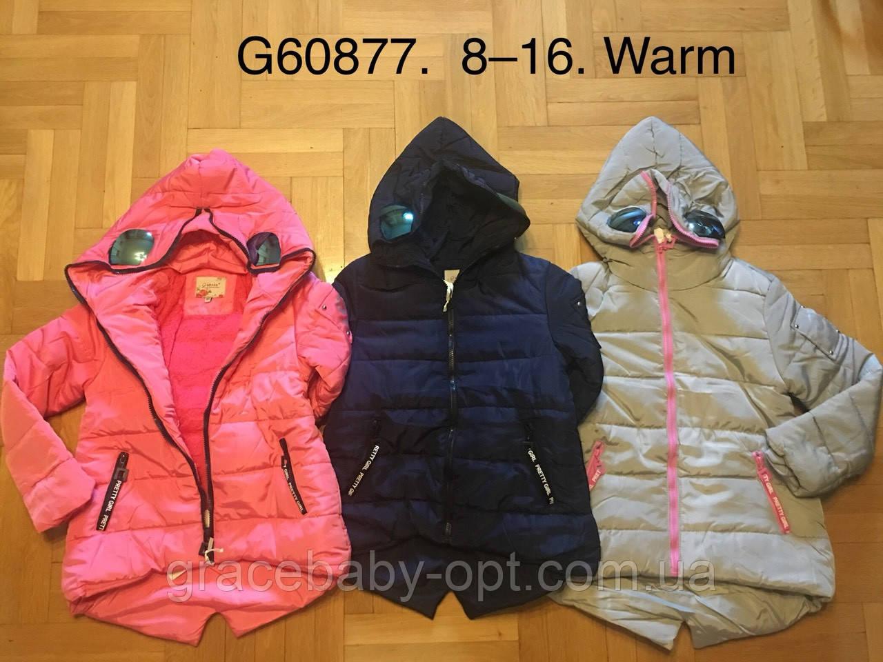 88df4a805298 Куртка утепленная для девочек оптом, Grace, 8-16 лет, № G60877, цена ...