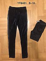 Лосины велюровые утепленные для девочек оптом, F&D, 8-16 лет,  № YF-8461, фото 1