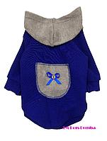 Толстовка для собак из кашемира с карманом синяя