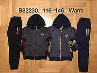 Трикотажный утепленный костюм 2 в 1 для мальчика оптом, Grace, 116-146 см,  № B82230, фото 1