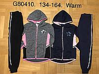 Трикотажный утепленный костюм 2 в 1 для девочек оптом, Graсe, 134-164 см,  № G80410, фото 1