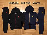 Трикотажный утепленный костюм 2 в 1 для мальчика оптом, Grace, 134-164 см,  № B82232, фото 1