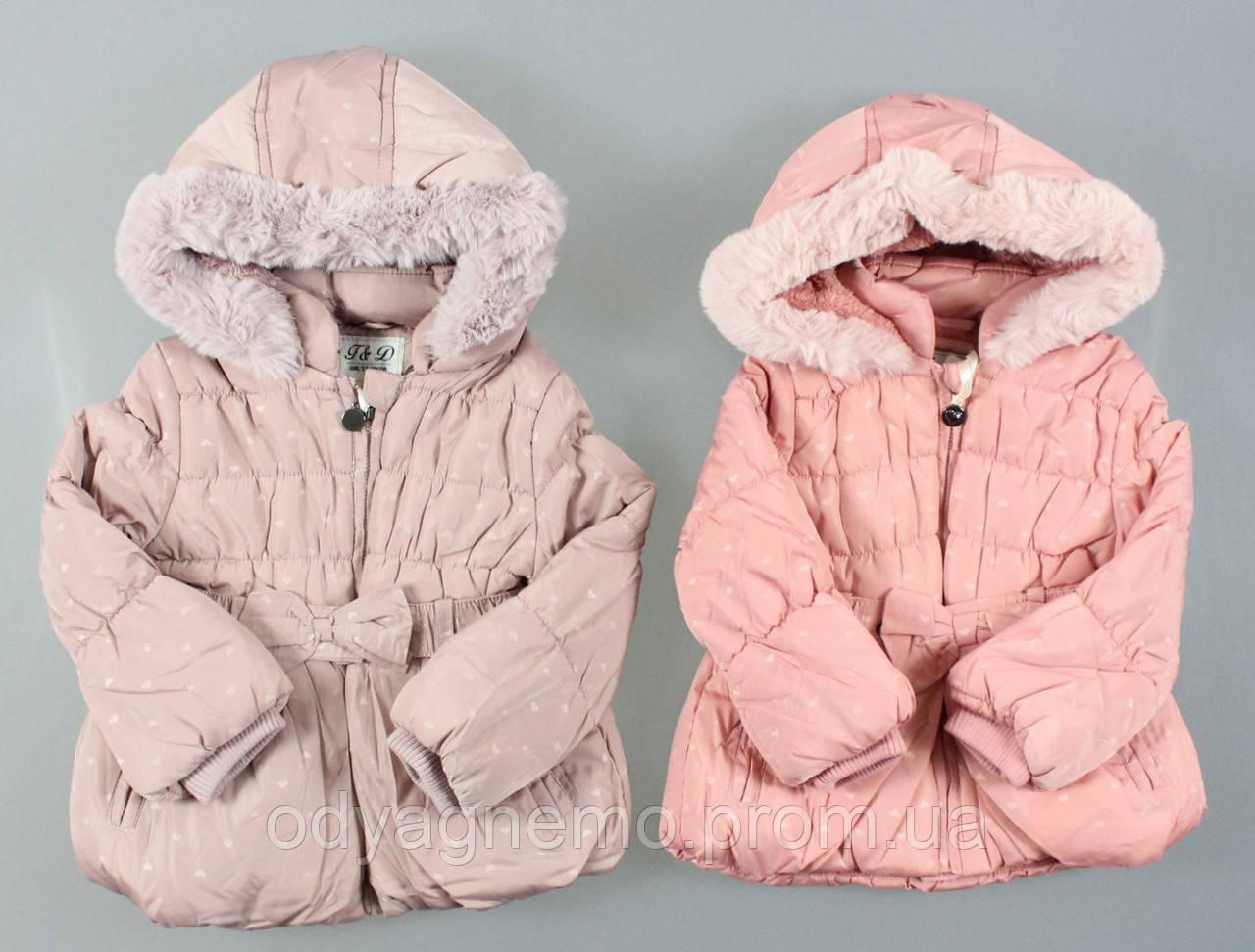 Куртка на меху для девочек F&D оптом, 12-36 мес.