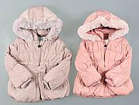 Куртка на меху для девочек F&D оптом, 12-36 мес., фото 1