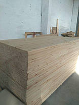 For export PINE Furniture wood panels, grade A/A radial 18-40mm, FCA, Dnipro/ Ukraine, фото 3