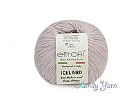 Etrofil Iceland, Сухая роза №1009