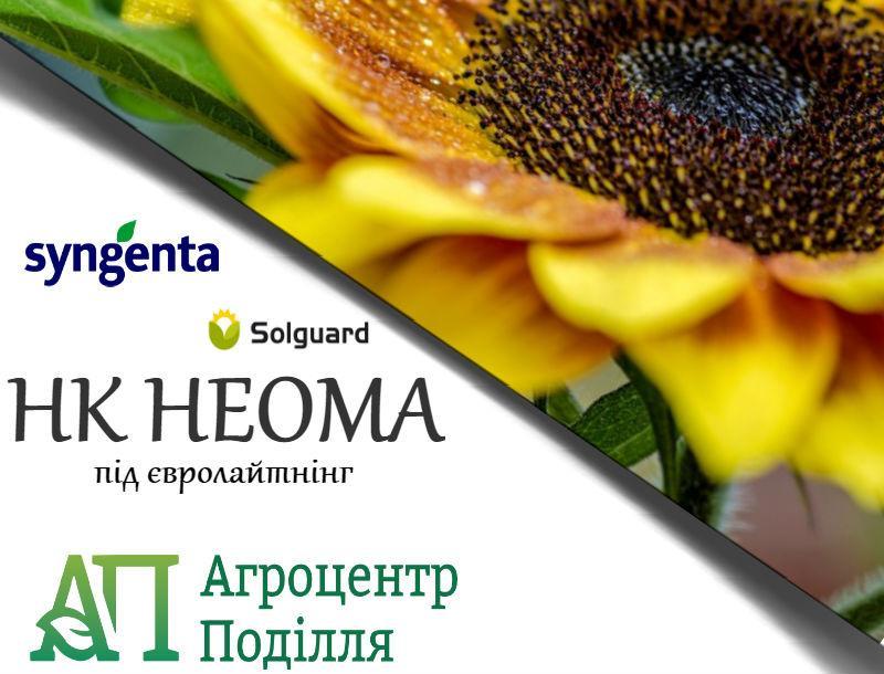 НК Неома семена подсолнечника под евролайтинг Сингента