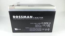 Тяговый аккумулятор Bossman 12V 9Ah 6DZM9