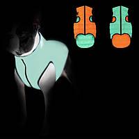 Куртка жилетка для собак Эйри вест (Airy vest Collar) люминесцентная светится в темноте XS 22