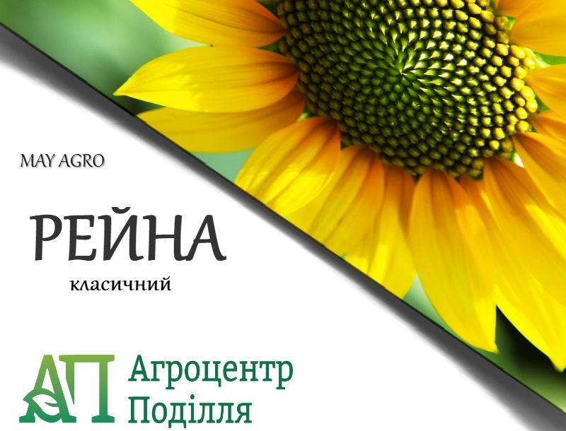 Семена подсолнечника РЕЙНА 95-100 дн. (May Agro Seed Турция)