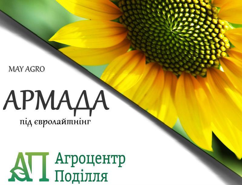 Семена подсолнечника АРМАДА под евролайтинг  112-115 дн. (May Agro Seed Турция)