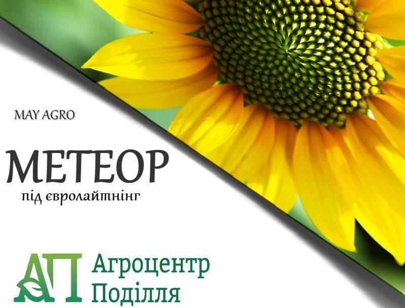 Семена подсолнечника под евролайтинг МЕТЕОР 92-95 дн. (May Agro Seed Турция)