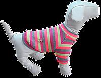 Свитер из бантиком для собак