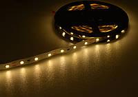Лента светодиодная 3528 (60 диод./м 4.8w/м) 12V Теплый свет(не герметичная) Motoko