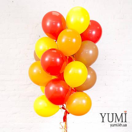 Осенняя связка из 20 гелиевых шариков, фото 2
