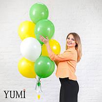 Букет для ребенка из 10 шаров с гелием + декор: гирлянда воздушные шары с корзиной и объемные облака, фото 2