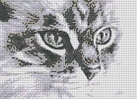 Алмазная вышивка «Киса». АВ-3017 (А3). Полная выкладка