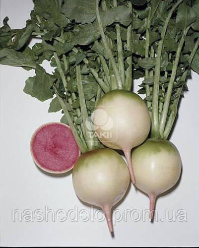 Семена японской редьки Ред Мит 100 грамм Takii Seed - Наше дело - сеть магазинов для овощеводов в Мелитополе