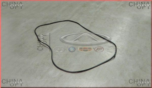 Уплотнитель заднего стекла, Chery Eastar [B11,1.8], B11-5206021, Original parts