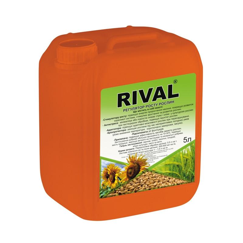 Регулятор роста Rival (Ривал), 5л, Киссон