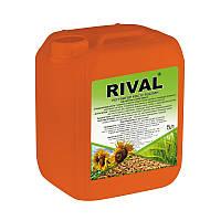 Регулятор роста Rival (Ривал), 5 л, Киссон, Украина