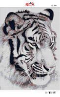 Алмазная вышивка «Тигр». АВ-3006 (А3). Полная выкладка