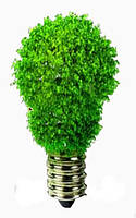 Вред энергосберегающих ламп — миф или реальность