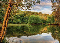 Фотообои Озеро №24 Озеро 272*196 (8л)