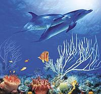 Фотообои  Коралловый риф 208х194 (12л) №