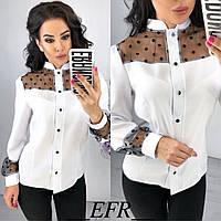 d61a0ab4602 Блуза с воротником стойка в Украине. Сравнить цены