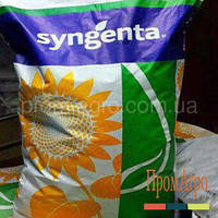Семена подсолнечника, Syngenta, СИ КУПАВА