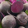 Детройт насіння буряка столового округлого раннього 80-100 днів Італія Semenaoptom 50 г