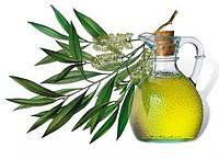 Эфирное масло чайного дерева  5 мл / 50 мл