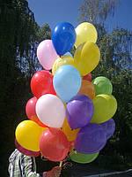 Букет из латекса «пастель разноцвет»