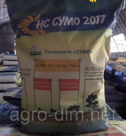 Семена подсолнечника HC-Sumo-2017, фото 2