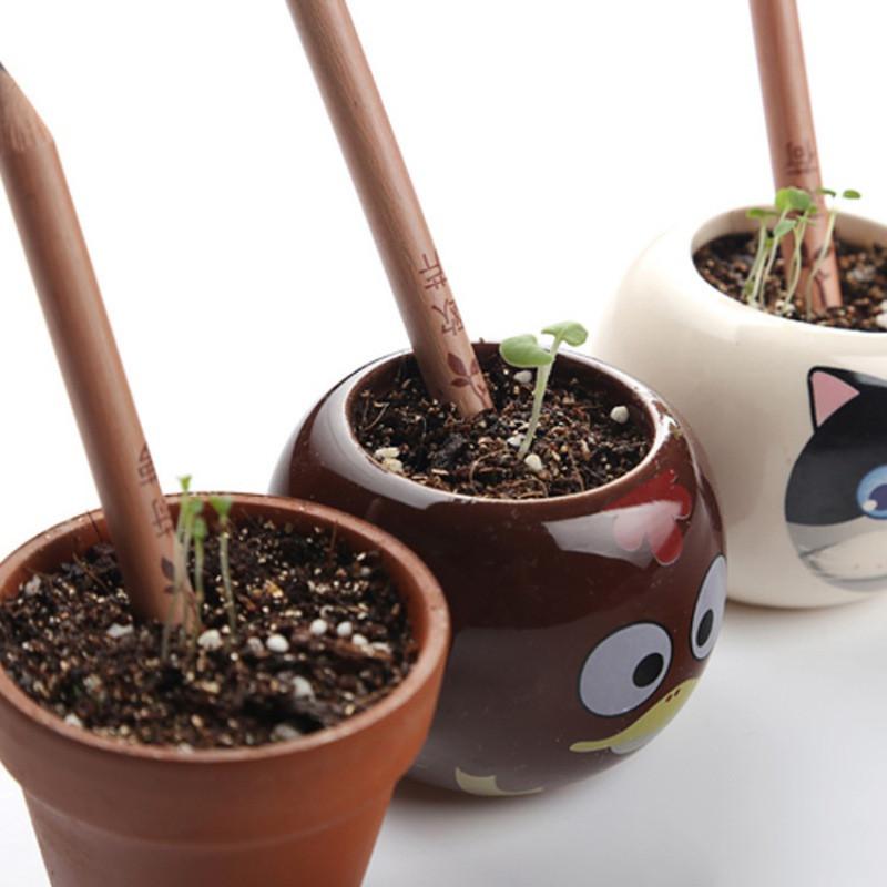 Карандаш, из которого может вырасти растение! Набор 8 шт.!