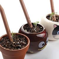 Карандаш, из которого может вырасти растение! Набор 8 шт.!, фото 1