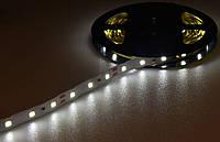 Лента светодиодная 3528 (60 диод./м 4.8w/м) 12V Белый свет(не герметичная) Motoko
