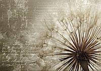 Фотообои 3D цветы (флизелин, плотная бумага 368х254 см) Арт одуванчик (11683CN)