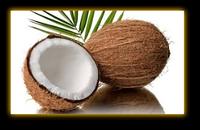 Эфирное масло Кокоса - 5 мл / 50 мл