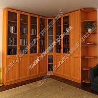 Книжный шкаф для гостиной Ш: 2400-2400 мм, Г: 400 мм, В: 2300 мм