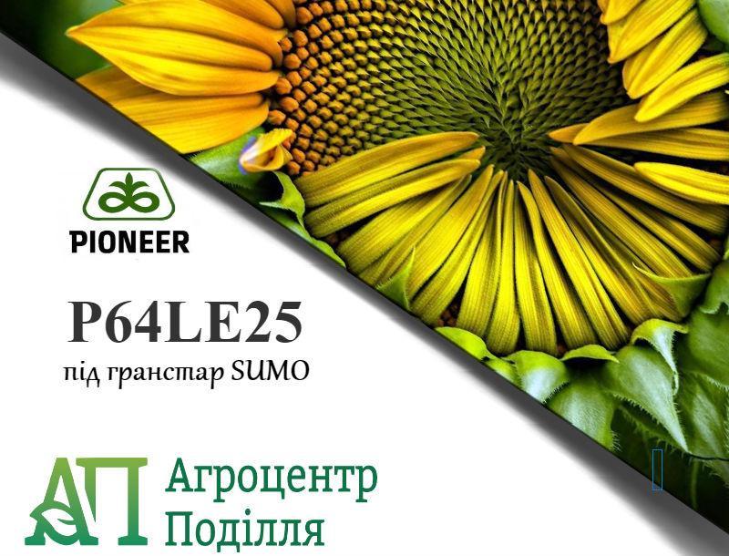 Семена подсолнечника под гранстар P64 LE25 / П64 ЛЕ25  Пионер