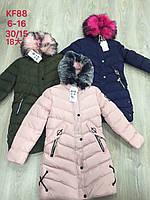 Куртки на меху для девочек оптом, S&D, 8-16 лет., арт.KF-88