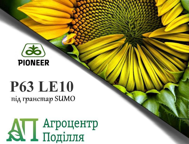 Семена подсолнечника под гранстар P63 LE10 / П63 ЛЕ10 Пионер