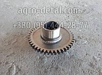 Шестерня 25.21.118-1 привода гидронасоса НШ Z=43 муфты сцепления трактора Т 25,Т 25А, фото 1